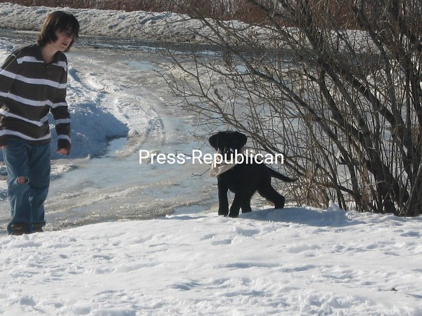 Snow day for Cosmo!<br /> <br /> Photographer's Name: joe bousquet<br /> Photographer's City and State: Plattsburgh, NY