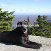 Day hike up Lyon Mtn 2013<br /> <br /> Photographer's Name:  <br /> Photographers City and Country: ,