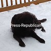 Snowy days!<br /> <br /> Photographer's Name: Corinne Fitzpatrick<br /> Photographer's City and State: Malone, NY