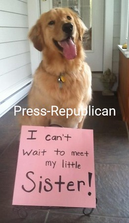 Benson with a message for mom...<br /> [P-R employee photo: not eligible for contest]