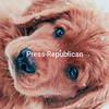 PUPPY DOG EYES!!!<br /> <br /> Photographer's Name: LORI WOOD<br /> Photographer's City and State: SARANAC, NY