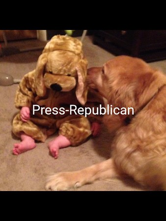 On baby-sitting duty — Bob Parks' granddaughter Carly with her dog Jude.<br /> [P-R employee photo: not eligible for contest]<br /> <br /> Photographer's Name: Bob Parks<br /> Photographer's City and State: Plattsburgh, NY