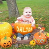 Our littlte pumpkin Dalton