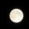 Beautiful night to see the Harvest Moon