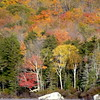 Nice Foliage At Kettle Pond