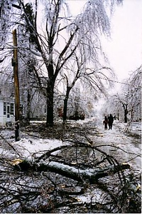 Photos by George Wurster of Plattsburgh