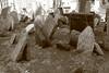 """Jewish Cemetery, Prague"" sepia tone B&W photo"