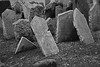 """Generations Collide, Jewish Cemetery, Prague"""
