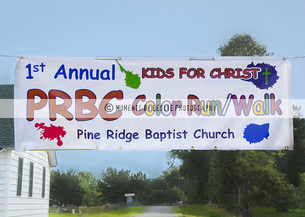 PRBC COLOR RUN/WALK 2017