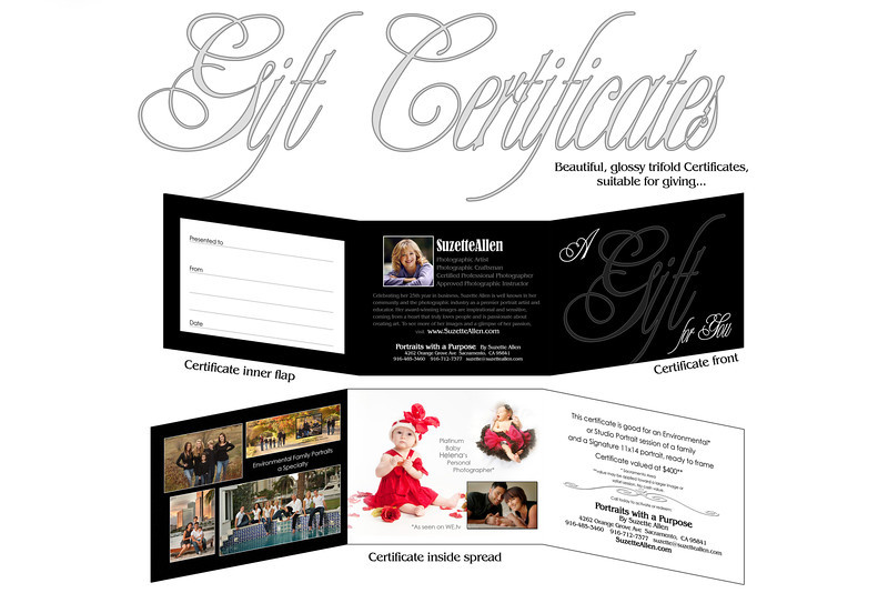 We welcome you to send a gift certificate to your family or friends! We support them getting the 11x14 or applying the value toward any other equivalent product on our pricelist! These are nice for gift giving and look very professional!