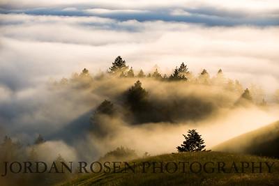 Jordan Rosen Photography-2-2