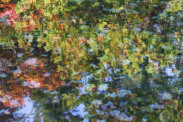 Watery Impression of Autumn