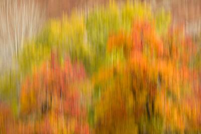 Autumn Impression in Southwest