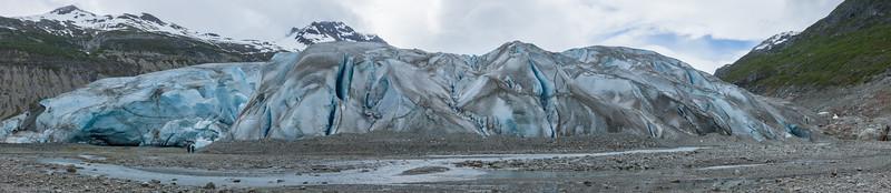 Reid Glacier in Panorama