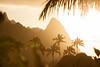 Paradise - Hawaii