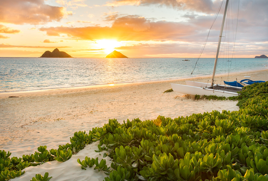 Relaxing in Paradise.  Oahu, HI