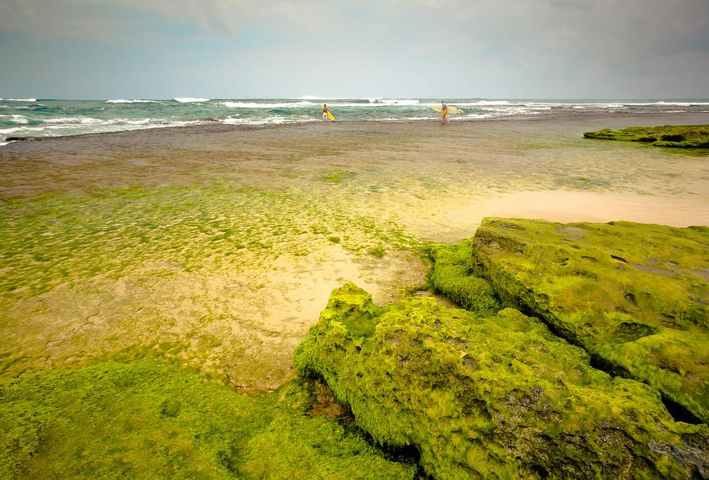 Surfs Up - Kauai, HI