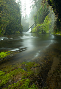 Punch Bowl Falls in Spring
