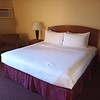 Clean, comfortable, super friendly service for 75$ a night with expedia & flight