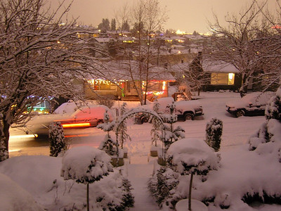 White winter in Vancouver  2008-09-- PRIVATE
