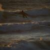 Salt Creek Beach 3-27-2017