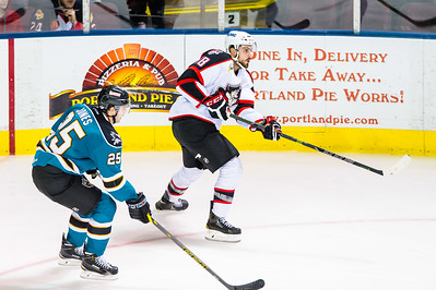 Portland Pirates vs. Worcester Sharks at the Cross Insurance Arena in Portland, Maine on 12/2/2014. (Photo by Michael McSweeney/Portland Pirates)