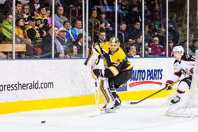 Portland Pirates vs. Providence Bruins at the Cross Insurance Arena in Portland, Maine on 1/3/2015. (Photo by Michael McSweeney/Portland Pirates)