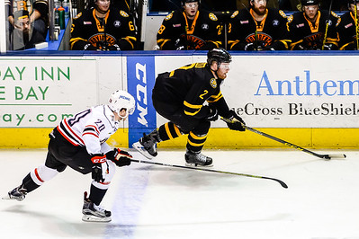 Portland Pirates regular season contest against the Providence Bruins at the Cross Insurance Arena in Portland, Maine on 3/5/2016. (Photo by Michael McSweeney/Portland Pirates)