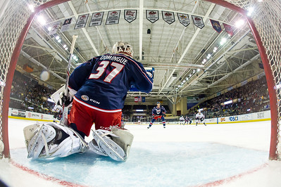 Portland Pirates regular season contest against the Springfield Falcons at the Cross Insurance Arena in Portland, Maine on 11/6/2015. (Photo by Michael McSweeney/Portland Pirates)