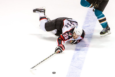 Pirates regular season contest vs. the Worcester Sharks at the Cross Insurance Arena in Portland, Maine on 4/7/2015. (Photo by Michael McSweeney/Portland Pirates)