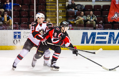 Portland Pirates vs. Binghamton Senators at the Cross Insurance Arena in Portland, Maine on 1/7/2015. (Photo by Michael McSweeney/Portland Pirates)