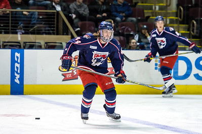 Portland Pirates regular season contest against the Springfield Falcons at the Cross Insurance Arena in Portland, Maine on 12/9/2015. (Photo by Michael McSweeney/Portland Pirates)