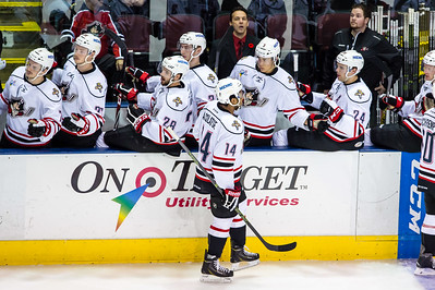 Portland Pirates regular season contest against the Hartford Wolf Pack at the Cross Insurance Arena in Portland, Maine on 11/11/2015. (Photo by Michael McSweeney/Portland Pirates)