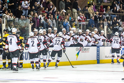 Pirates celebrate after a goal is scored in the second period during the Portland Pirates 2014-15 season opener vs the Providence Bruins at the Cross Insurance Arena in Portland, Maine on 10/11/2014. (Photo by Michael McSweeney/Portland Pirates)