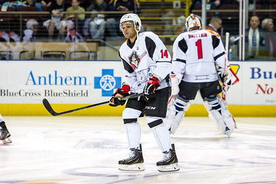 Portland Pirates regular season contest against the Providence Bruins at the Cross Insurance Arena in Portland, Maine on 12/12/2015. (Photo by Michael McSweeney/Portland Pirates)