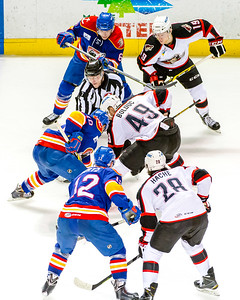 Portland Pirates vs. Norfolk Admirals at the Cross Insurance Arena in Portland, Maine on 3/13/2015. (Photo by Michael McSweeney/Portland Pirates)