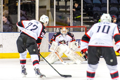 Portland Pirates vs. Norfolk Admirals at the Cross Insurance Arena in Portland, Maine on 3/14/2015. (Photo by Michael McSweeney/Portland Pirates)