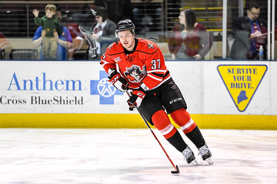 Portland Pirates regular season contest against the Bridgeport Sound Tigers at the Cross Insurance Arena in Portland, Maine on 4/15/2016. (Photo by Michael McSweeney/Portland Pirates)