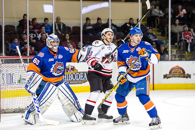 Portland Pirates regular season contest against the Bridgeport Sound Tigers at the Cross Insurance Arena in Portland, Maine on 1/15/2016. (Photo by Michael McSweeney/Portland Pirates)