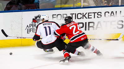 Portland Pirates vs. Albany Devils at the Cross Insurance Arena on 11/15/2014. Portland, Maine. (Photo by Michael McSweeney/Portland Pirates)