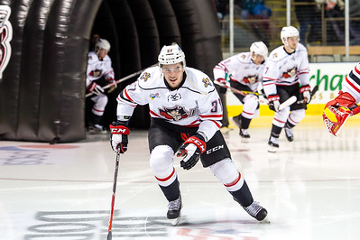Portland Pirates regular season contest against the Bridgeport Sound Tigers at the Cross Insurance Arena in Portland, Maine on 1/16/2016. (Photo by Michael McSweeney/Portland Pirates)