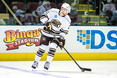 Portland Pirates vs Hershey Bears. Cross Insurance Arena in Portland, Maine on 10/18/2015. (Photo by Michael McSweeney/Portland Pirates).