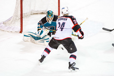 Portland Pirates vs. Worcester Sharks at the Cross Insurance Arena in Portland, Maine on 1/21/2015. (Photo by Michael McSweeney/Portland Pirates)