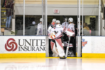 2016 Calder Cup Playoffs. Atlantic Division Semifinal, Game 1. Portland Pirates vs. the Hershey Bears at the Cross Insurance Arena in Portland, Maine on 4/22/2016. (Photo by Michael McSweeney/Portland Pirates)