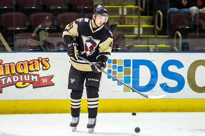 Portland Pirates regular season contest against the Wilkes-Barre/Scranton Penguins at the Cross Insurance Arena in Portland, Maine on 1/22/2016. (Photo by Michael McSweeney/Portland Pirates)