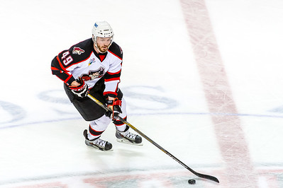 Pirates regular season contest vs. the St. John's IceCaps at the Cross Insurance Arena in Portland, Maine on 2/25/2015. (Photo by Michael McSweeney/Portland Pirates)