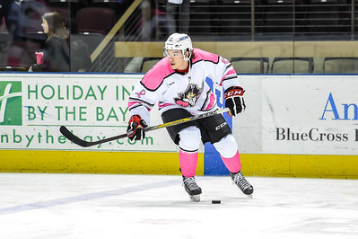 Portland Pirates regular season contest against the Springfield Falcons at the Cross Insurance Arena in Portland, Maine on 3/25/2016. (Photo by Michael McSweeney/Portland Pirates)