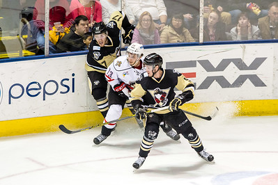 Portland Pirates regular season contest against the Wilkes-Barre/Scranton Penguins at the Cross Insurance Arena in Portland, Maine on 2/26/2016. (Photo by Michael McSweeney/Portland Pirates)