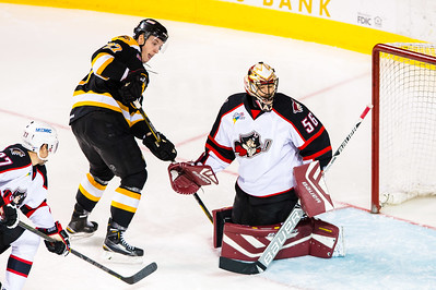 Portland Pirates vs. Providence Bruins at the Cross Insurance Arena in Portland, Maine on 11/28/2014. (Photo by Michael McSweeney/Portland Pirates)