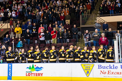 Providence Bruins.  Portland Pirates vs. the Providence Bruins at the Cross Insurance Arena in Portland, Maine on 11/28/2014. (Photo by Michael McSweeney/Portland Pirates)